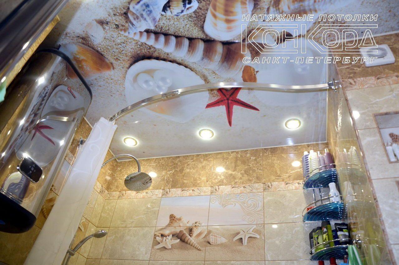 Натяжной потолок с фотопечатью Пальмы в ванную от компании ПИФАГОР ... | 853x1280